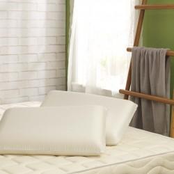 LaSova 舒眠雲朵枕x1+特安康 Sleep95