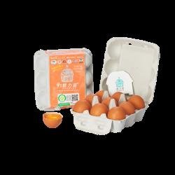 隆昌牧場鮮力蛋(紅蛋)  -四盒組