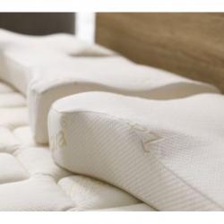 【宅家好禮一 】LaSova總裁枕套組 6月好禮加贈親膚抑菌枕巾乙件